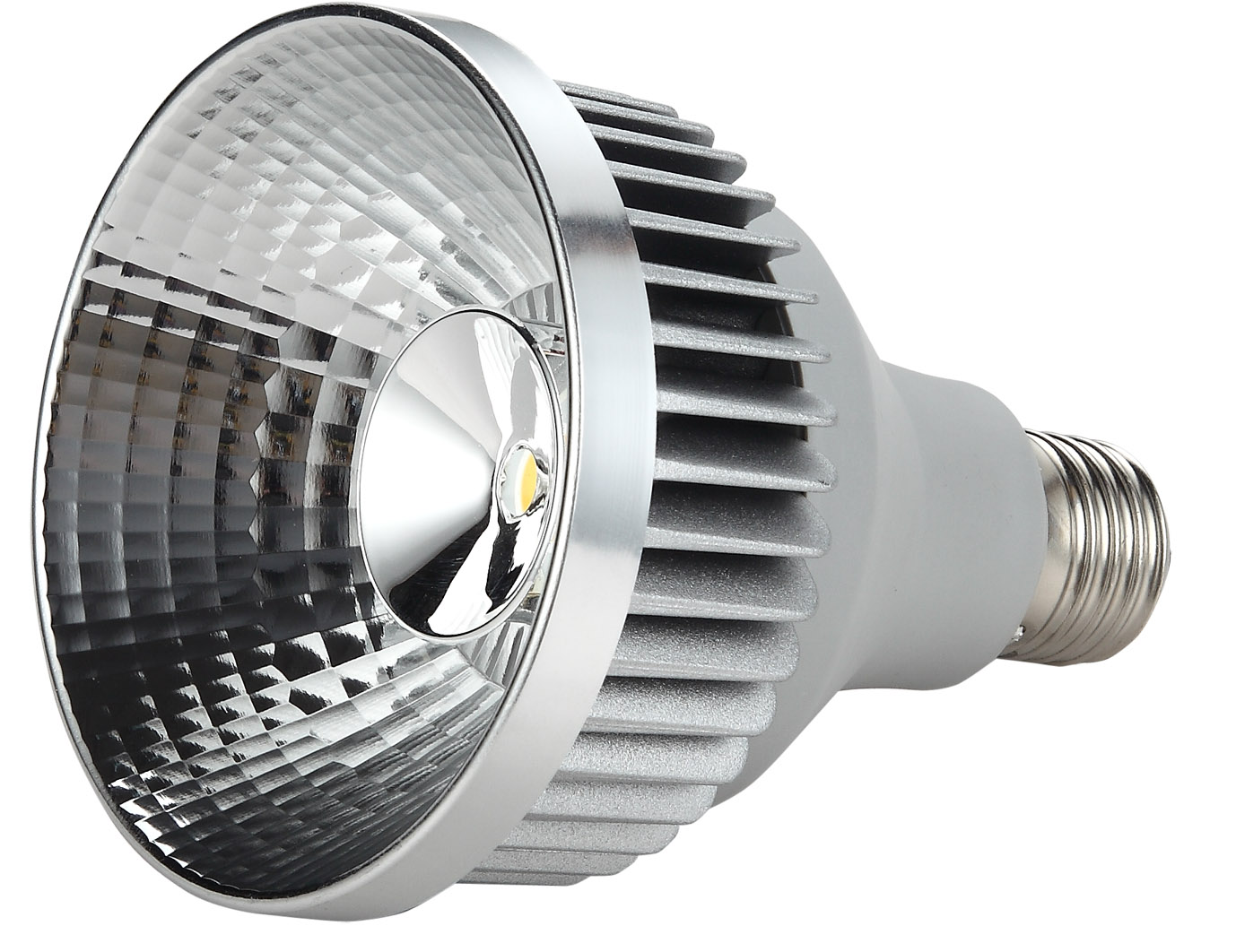 LED Spot Light <br/> ARR-01004-PAR30-WW